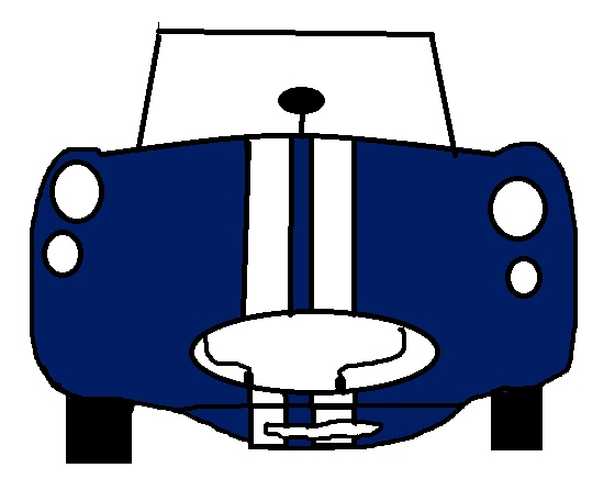 shelbi-cobra